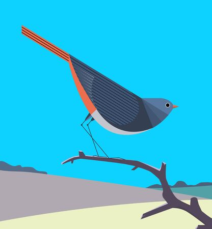 Redstart with a bright orange tail sits on a dry tree branch on a background of rolling hills