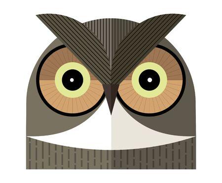 Owl portrait on white background