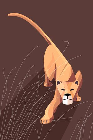 Sneaking lioness in the grass on a dark background, stylized image