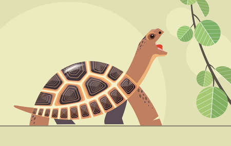 Beautiful steppe tortoise (Central Asian) reaches for a fresh green leaf, stylization Illustration