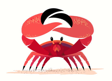 A red crab on a sandy shore exposed its large claws
