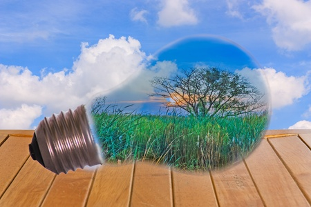 Ideas, a light bulb with a tree, put on the table with a sky background  photo