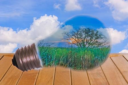 Le idee, una lampadina con un albero, messo sul tavolo, con un background di cielo