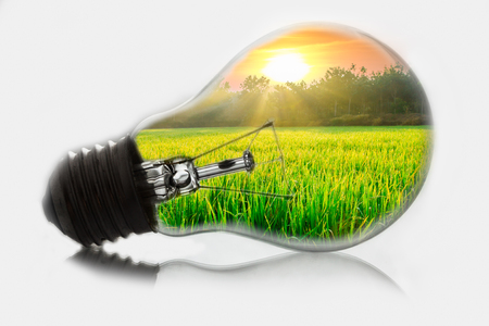 Ideas, a field with sunrise in the morning in a light bulb  photo