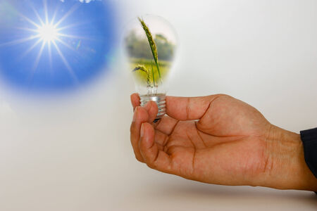 Sun with hands that holds light bulb with grass inside,Energy and environment concept photo
