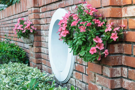 Flowers in pots on a brick wall in the garden photo
