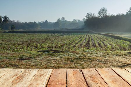 Rural farm field of wood and space with winter landscape photo