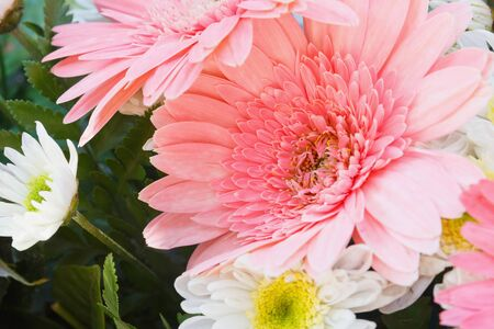 Wedding flowers using with a chrysanthemum. photo