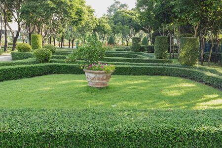 Garden Landscape design with in an Attractive Garden beautiful