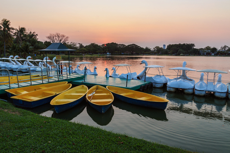 rowboats: Yellow rowboats anchored at harbor in evening
