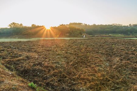 agricultural area: Sunrise with sun rays in agricultural area morning Stock Photo