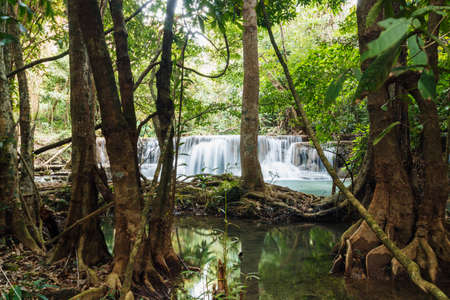 huay: Tree and Waterfall Huay Mae Kamin in forest of thailand