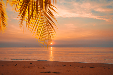 Hermoso amanecer tropical amarillo con hojas de palmera en el mar
