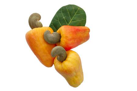 Three Cashews fruit ripe with leaf