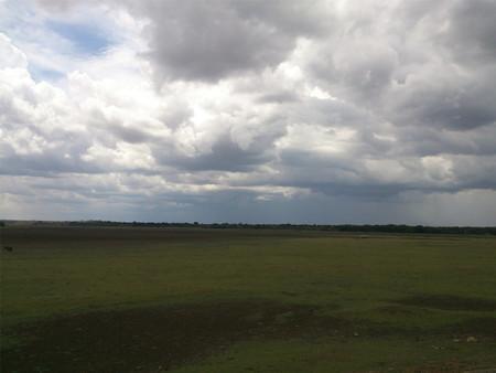 View of empty grassland Standard-Bild