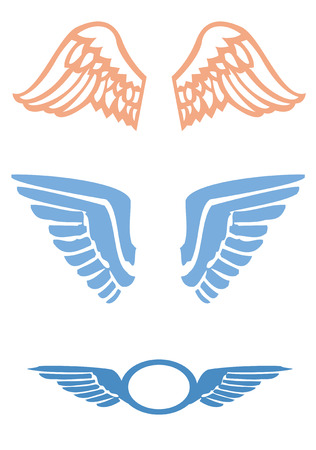 An vector illustration of bird wings on white background