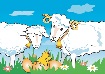 paschal lamb: Illustration of sheep, ram _and_chicken on a spring meadow. Vector illustration available for download