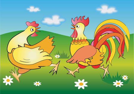 Vector illustration of running cockerel and pullet in a  spring meadow.