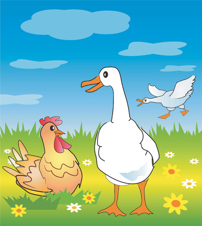 Goose and chicken in a spring meadow. Vector illustration. Vector