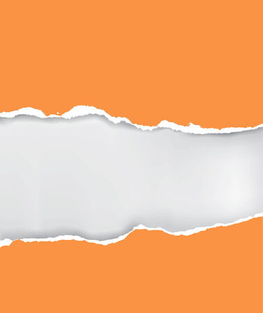 paper: Vector illustration of orange ripped paper with place for your image or text