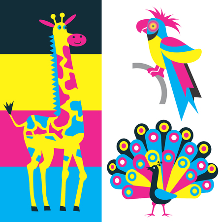 polygraph: Parrot, peacock and giraffe in the colors of inks. Useful  for presenting color printing. Vector illustration.
