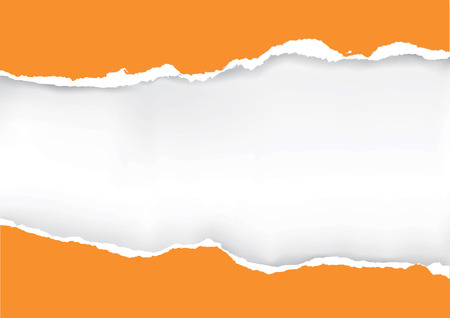 Orange ripped paper. Illustration of orange ripped paper with place for your image or text. Vector available.
