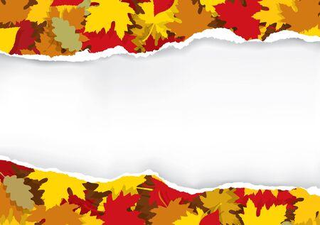 Gescheurd papier met herfstbladeren. Illustratie van gescheurd papier met herfstbladeren en plaats voor uw afbeelding of tekst. Vector beschikbaar.