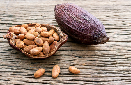 plant sweet: Collection of cacao seeds from pot is ready to be made cacao powder setup on wooden background.