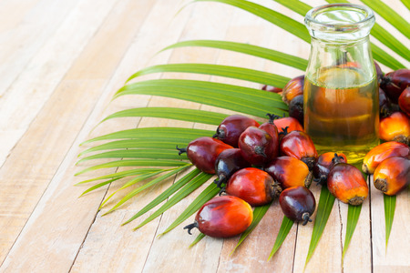palm oil fruits on on wooden surface Banco de Imagens