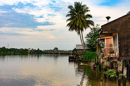 Coconut palm trees on the riverside with old house