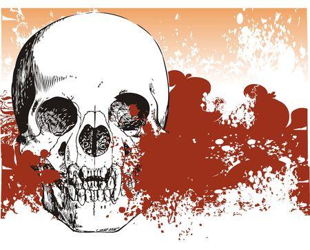 Vampire skull illustration