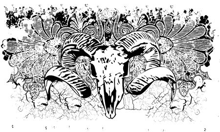 Ram skull vector illustration Çizim