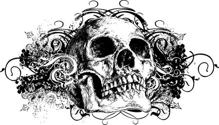 deces: Vector cr�ne floral grunge illustration  Illustration