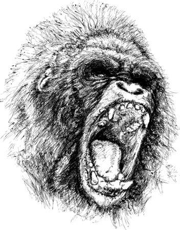 ape: Raging ape illustration