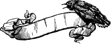corvini: Crow Banner Illustrazione Vettoriale