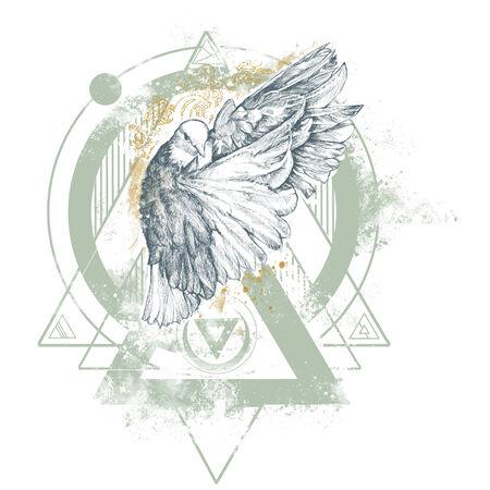 Enigma Dove Illustration Stock Photo
