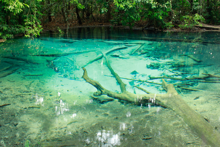 The Blue Pool at Emerald pool, Krabi photo