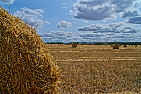 haymaking: Stack of hay