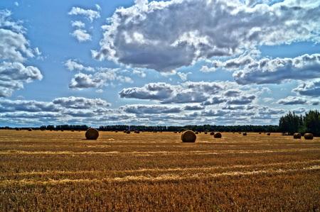 Colorful haystacks photo