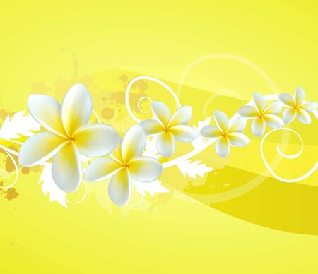 a composition with frangipani flowers and swirls