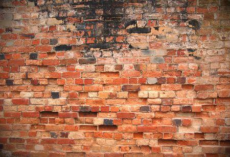 Grunge brick wall                              Stock Photo - 3297665