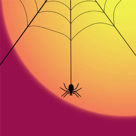 dangling: a spider dangling from the web