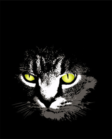 a scary cat Illustration