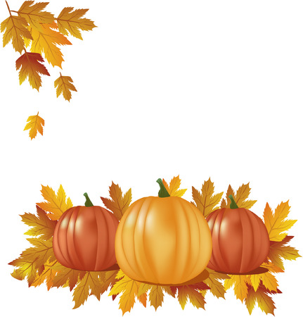 autumn- pumpkins with leaves Vector