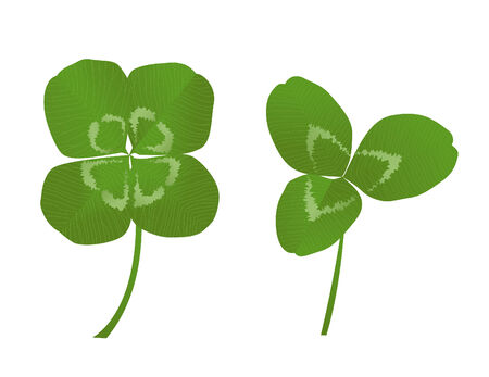 three and four leaf clovers Vector
