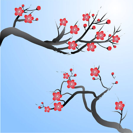 plum blossoms Vector