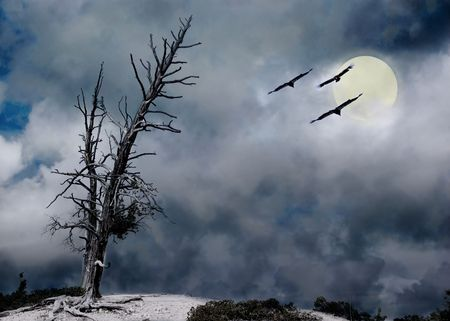 ghostly: eerie night with tree storm clouds and moon