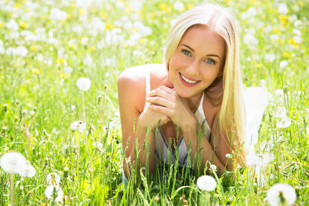 Beautiful young woman among dandelions photo