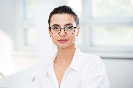 Young beautiful business woman in an office Standard-Bild