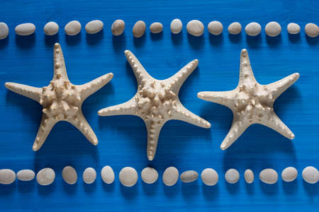Three stars. Starfish, stones and shells on a blue background